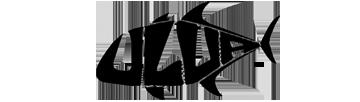 best baitcasting reel | ULUA.COM